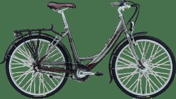 bike rental, bike rentals, bicycle rental, city bike rental, 2 wheel bike rental
