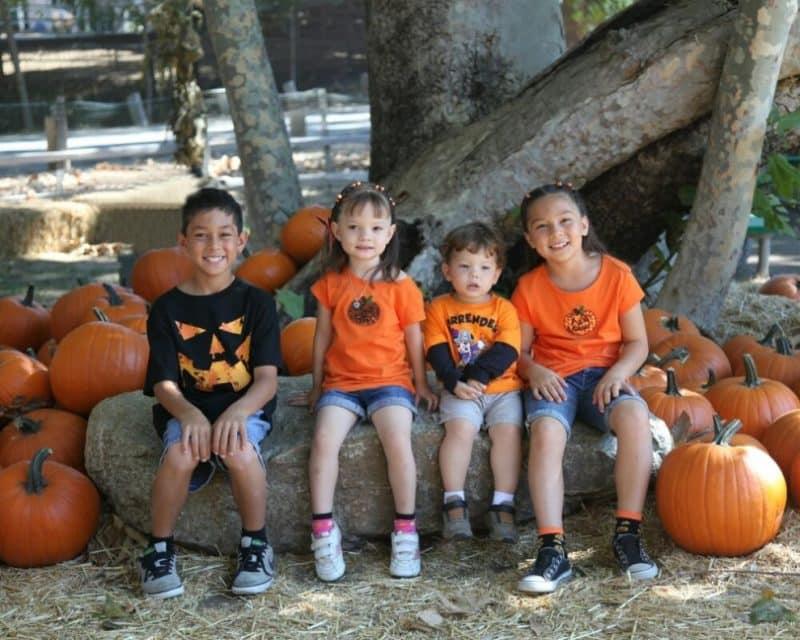 Richfield Pumpkin Patch activities are kid friendly
