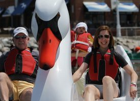Swan Boat rentals from Wheel Fun Rentals