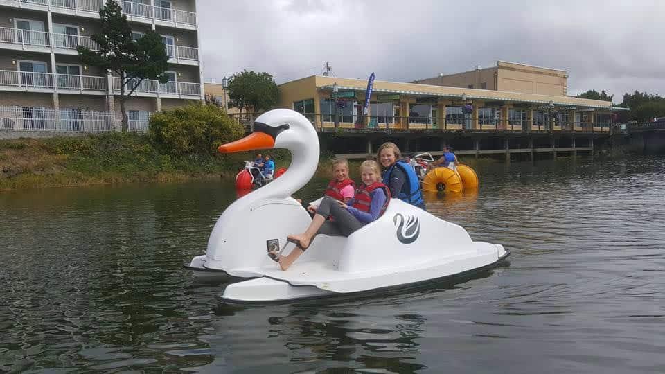 Plan a fun swan boat birthday party