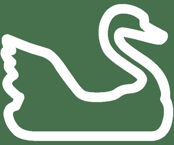 swan pedal boat rental